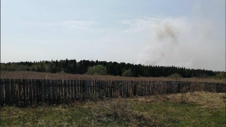 Огонь идет в 400 метрах от домов: в отрезанной от цивилизации тюменской деревне женщины тушат лес лейками