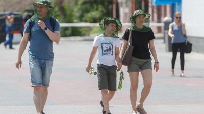 Нашествие мошки на Волгоград: ученые и экологи рассказали, что ждать горожанам