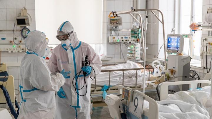 В Новосибирской области ковид обнаружили еще у 184 человек — в больницах находятся более 5000 пациентов