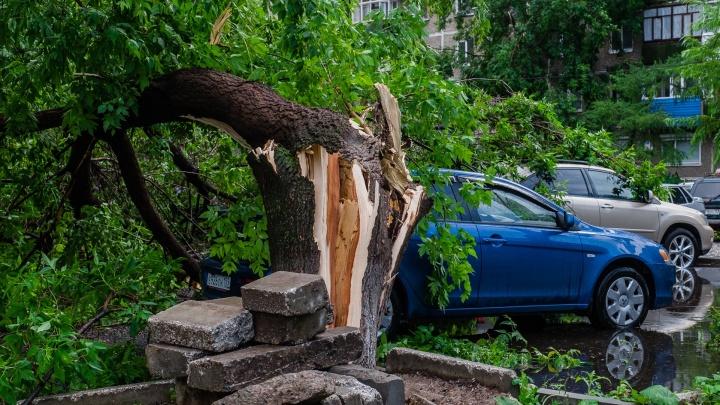 МЧС предупреждает о грозах и сильном ветре в Пермском крае