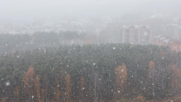 Первый снег накрыл Красноярск, на улицах — девятибалльные пробки