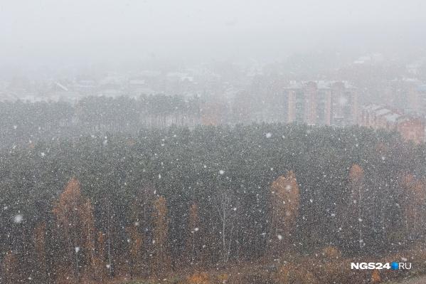 Снежная пелена накрыла город