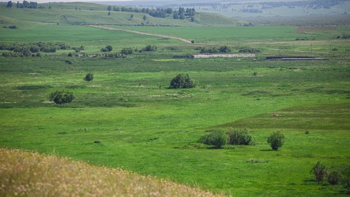Власти Кузбасса отдали угольщикам больше 200тысяч квадратов сельхозземель