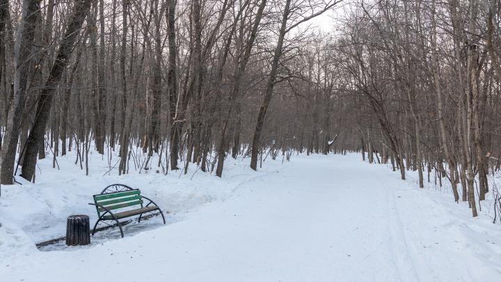 Стало известно, какая компания застроит площадку около парка 60-летия Советской власти