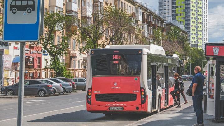 Минтранс Прикамья опубликовал еще 30 конкурсов для поиска перевозчиков на 126 междугородних автобусных маршрутов