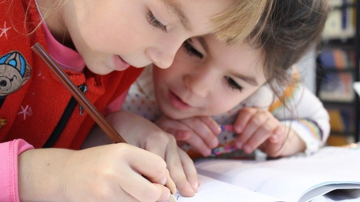 В Новосибирской области ищут и обучают одаренных детей