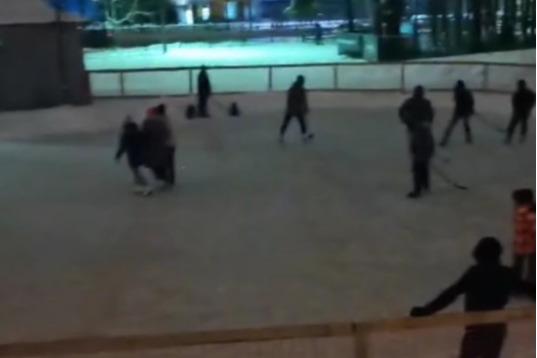 В Ярославле платный каток сделали бесплатным и вырубили свет
