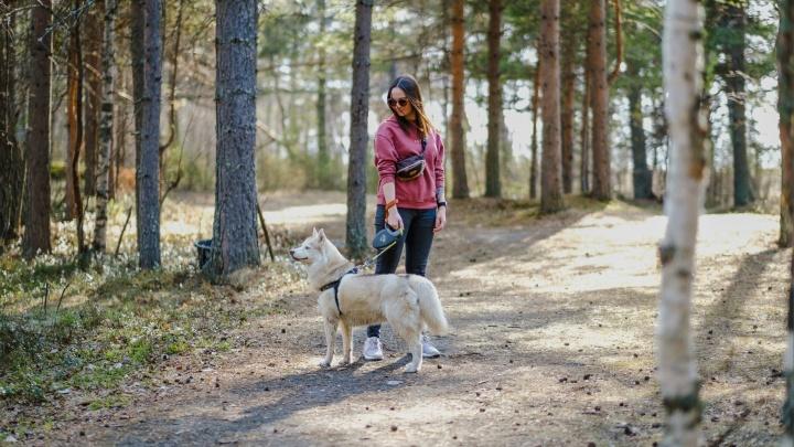 Вместо утреннего кофе — прогулка с собаками: девушка из Архангельска стала героем проекта «Один день из жизни северян»