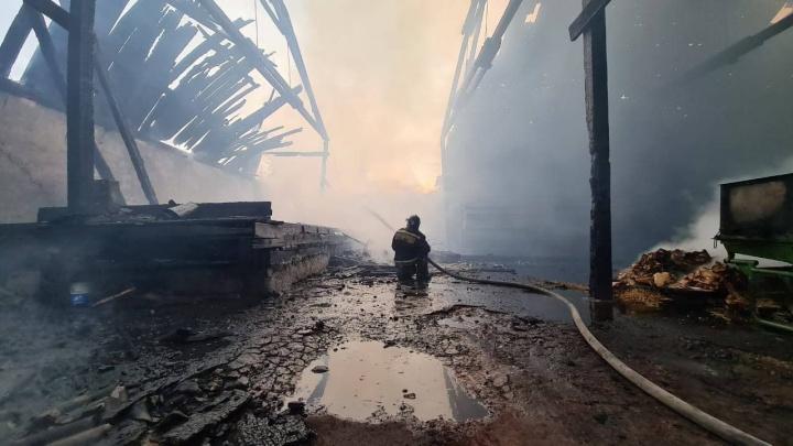 Крупный склад зернохранилища горел в Новой Солянке