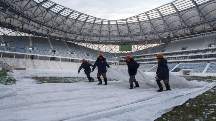 На стадионе «Волгоград Арена» дали подышать новому газону
