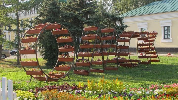 Мэрия Омска заказала для «Флоры» цветов на 2,8 миллиона рублей