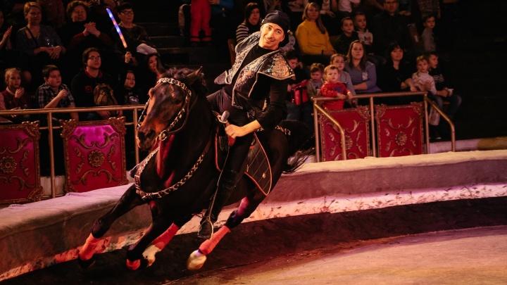 В Ярославском цирке начались гастроли «Шоу Легенда»