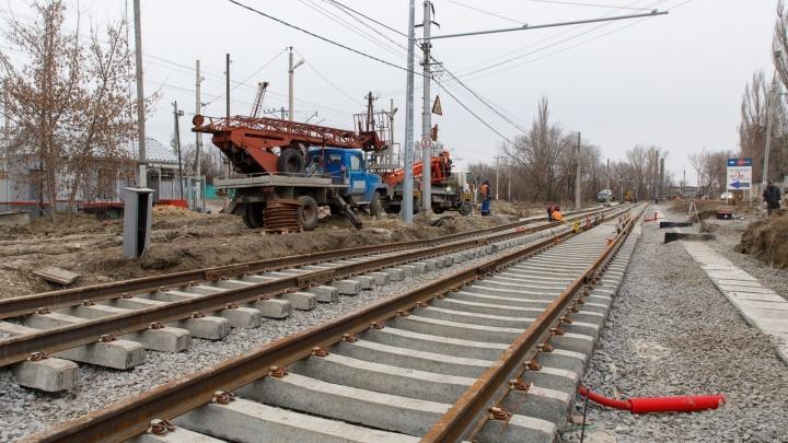 В Волгограде ураганный ветер повалил дерево на трамвайные пути