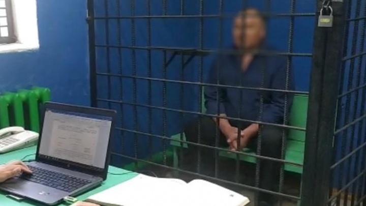 В Башкирии задержали главу сельсовета, где стая собак загрызла ребенка
