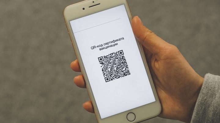 QR-коды, нерабочие дни и самоизоляция: 12 карточек о новых коронавирусных ограничениях в Прикамье