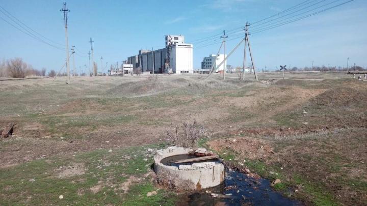 Росприроднадзор нашел нарушения у двух агропредприятий под Волгоградом. Жители заявляют об экокатастрофе