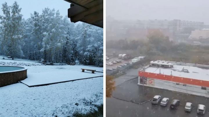 За городом настоящая зима: новосибирцы завалили соцсети фото и видео с первым снегом — показываем, каким он был