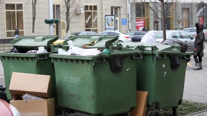 Сити-менеджер Ростова предложил поставить мусорный контейнер в квартиру главы Ленинского района