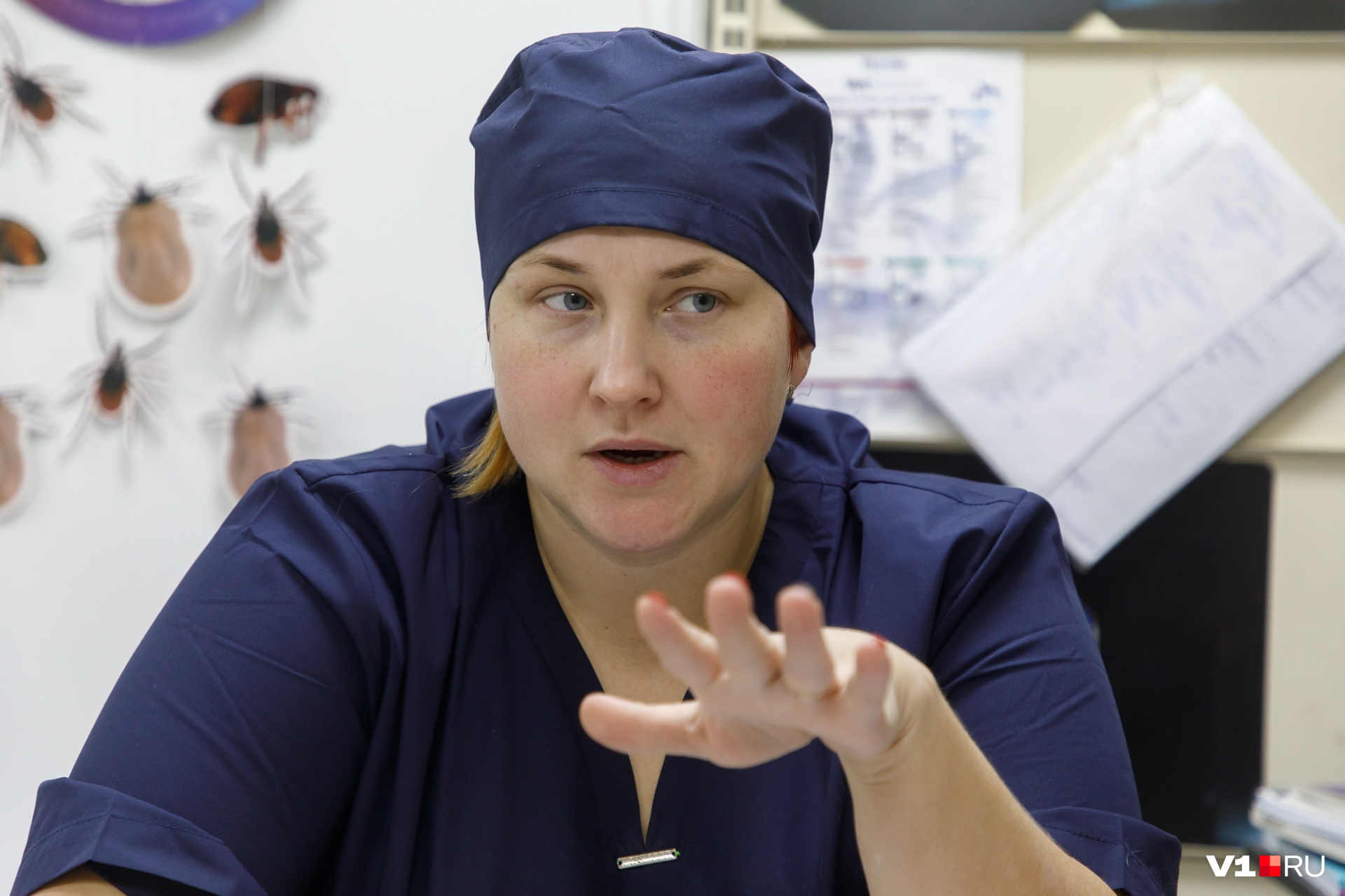 Ксения Казакова больше десяти лет оперирует любознательных животных
