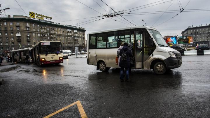 В Новосибирске запускают дачные маршруты