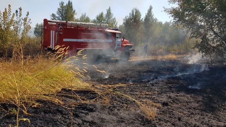 Под Волгоградом тушат крупный пожар в Волго-Ахтубинской пойме