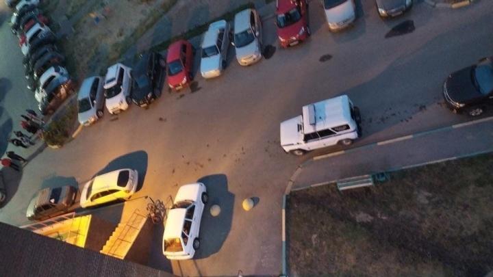 На Лесобазе скопление силовиков. Что там происходит?
