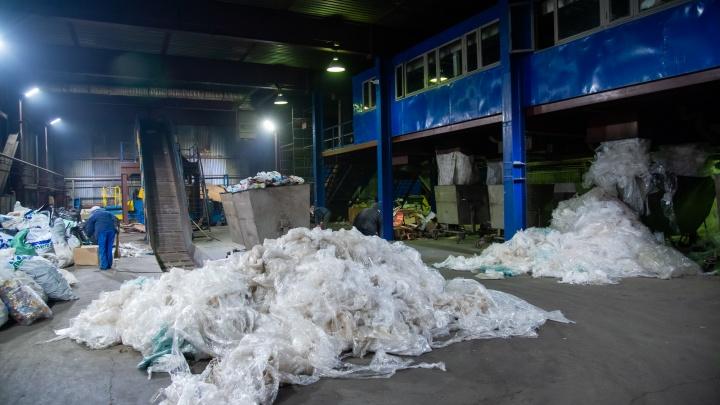 В Архангельской области собирают подписи за сохранение контейнеров для раздельного сбора мусора