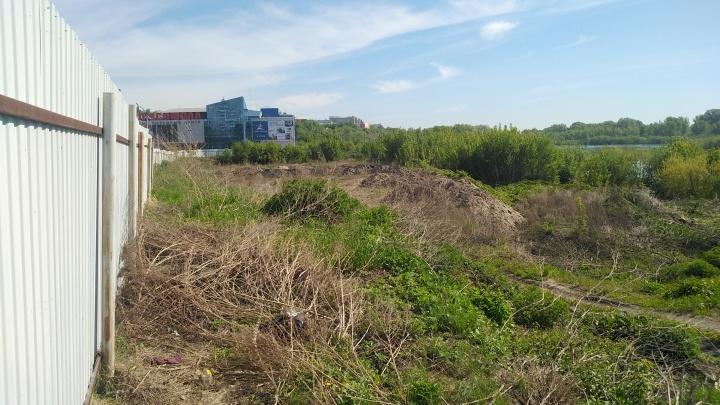 Назначены общественные слушания по застройке участка у Енисея возле «Комсомолла»