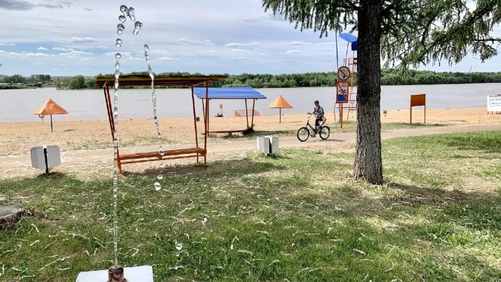 Пляжный сезон в Омске официально откроют в середине июня