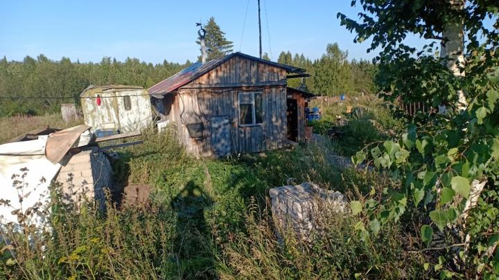 В поселке под Нижним Тагилом директор предприятия убил и сжег своего подчиненного