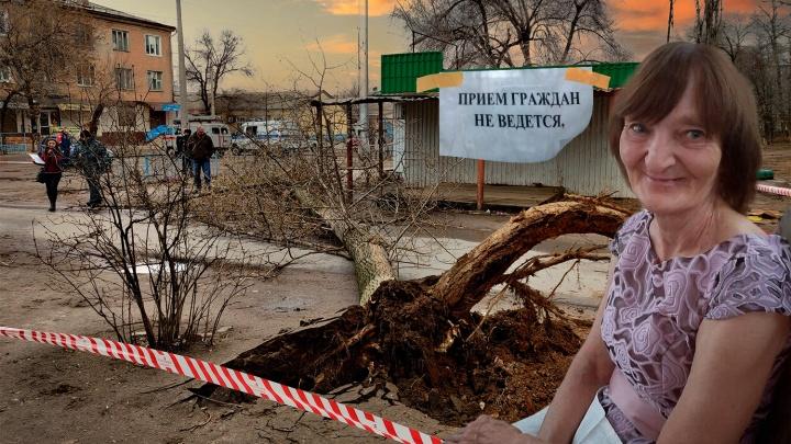 «Она нам была как мама. Таких больше нет»: в Волгограде 15-метровый тополь убил идущую на работу женщину