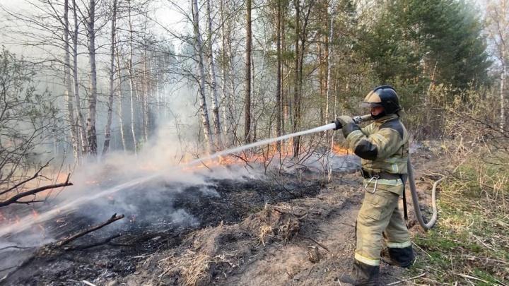 Ночью Тюмень опять затянуло смогом от горящих лесов. Власти ужесточили противопожарный режим