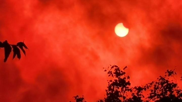 «Спасибо бухгалтерии»: как ярославцы снимали солнечное затмение. Фото