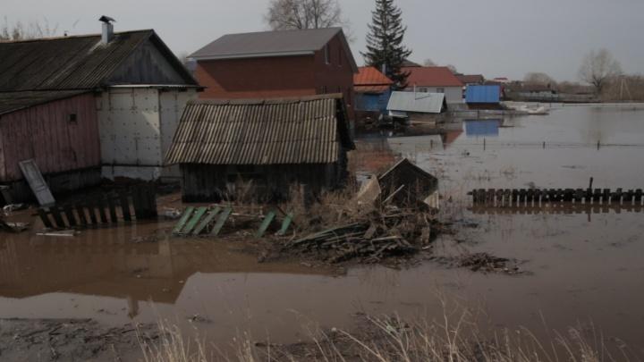 Гидролог рассказал всё, что нужно знать про паводок в Башкирии. Показываем на видео за три минуты