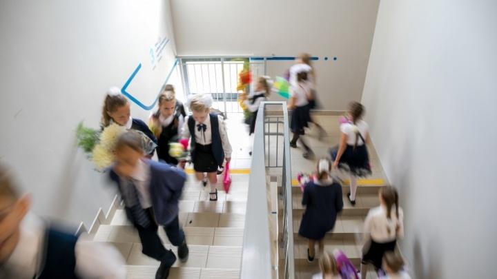 У парка Гагарина и на Взлётке запланировали строительство двух больших школ