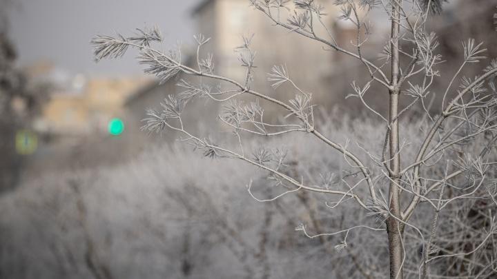 В Новосибирской области зафиксировали температуру в -45,6 градусов