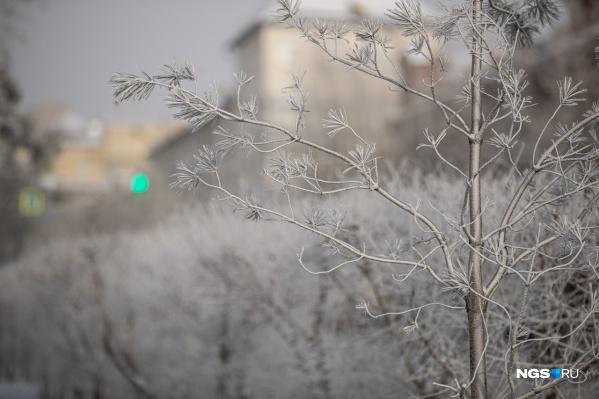 В воскресенье столбик термометра в Новосибирской области опустился практически до исторического минимума