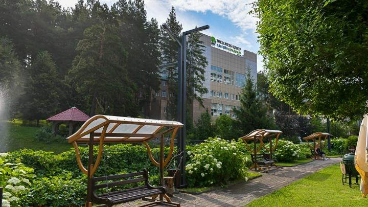 Безупречный сервис и уникальный курорт — где новосибирцы смогут отдохнуть, не уезжая далеко от дома
