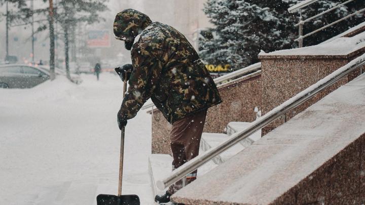 После Нового года в Тюменской области уволили больше 300 человек. Инструкция, как и где найти работу