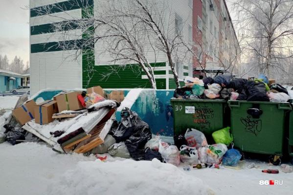 Пока дачники говорили, что зимой в ДНТ мусора практически нет, горожане жаловались на переполненные баки