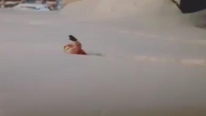 Норильская девочка проплыла кролем сквозь огромный сугроб