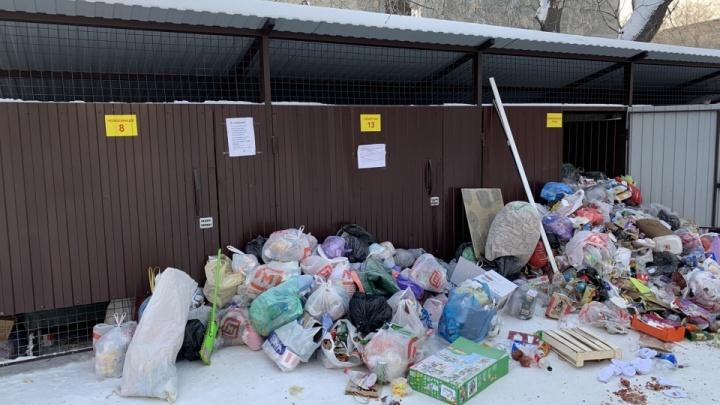 Власти НСО выделили дополнительные мусоровозы для вывоза накопившихся за праздники отходов