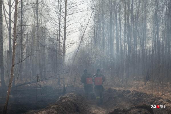 Замгенпрокурора не только вступился за тех, кто тушит пожары, но и за простых людей, потерявших свои дома