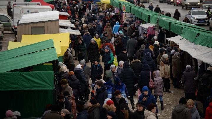 На главной площади Екатеринбурга в эти выходные будут продавать сыр и саженцы