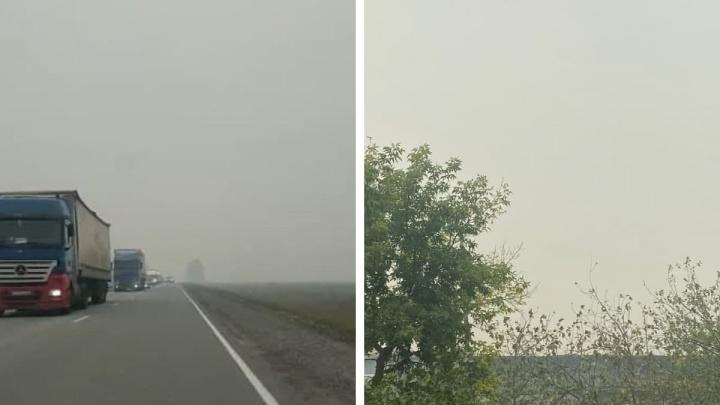 «Неба не видно». Трассы и целые районы в области снова затянул смог