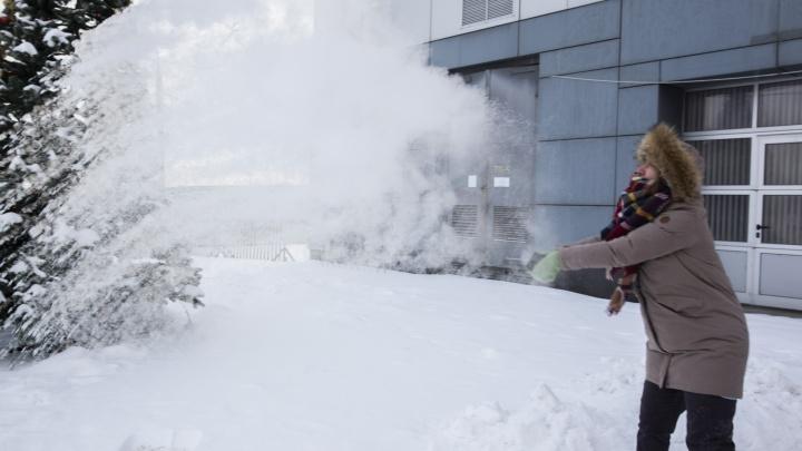 Арктическое вторжение: в Ярославской области ввели режим повышенной готовности из-за морозов