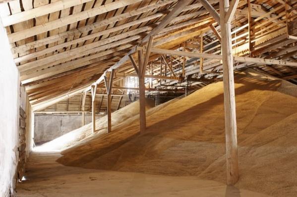 В Шарыповском районе существует избыток зерна