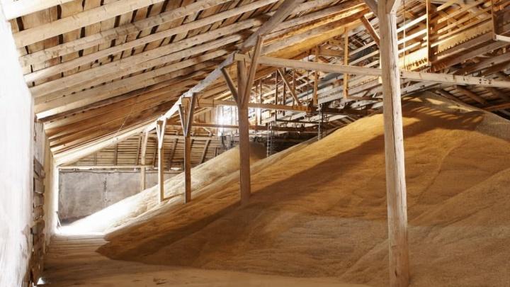 «Сибагро» планирует построить завод по переработке зерна в Красноярском крае к 2023 году