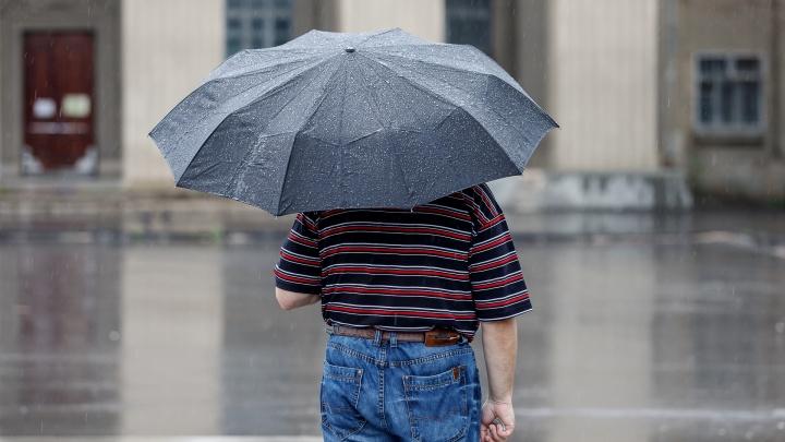 Не спалит, так смоет: синоптики предупреждают о надвигающейся на Волгоград буре