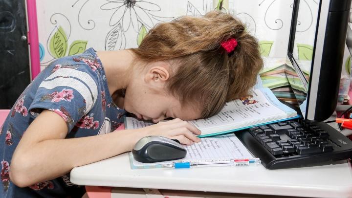 Отправят ли нижегородских школьников на дистант? Отвечают Министерство образования, Роспотребнадзор и директора школ